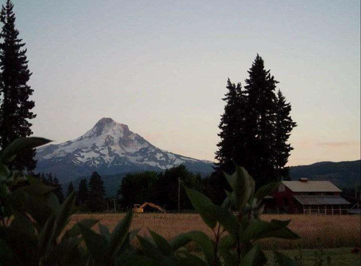 Farm to Mountain - Outdoor Dreams