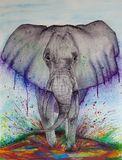 Stomping Elephant