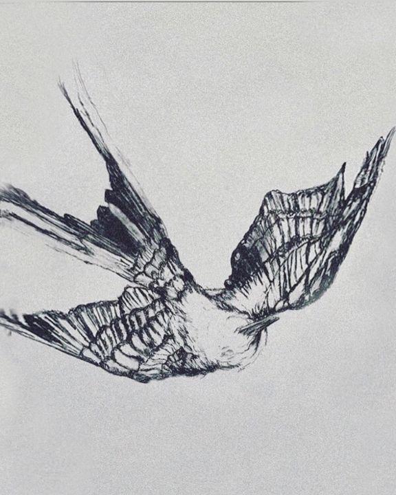  SWALLOW SKETCH. - Floraison Bloom