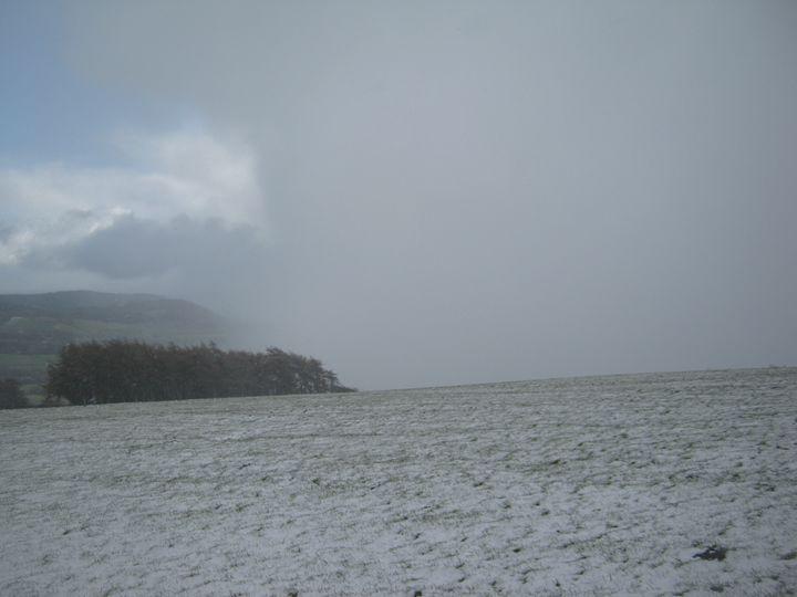 Snow storm - nature's window