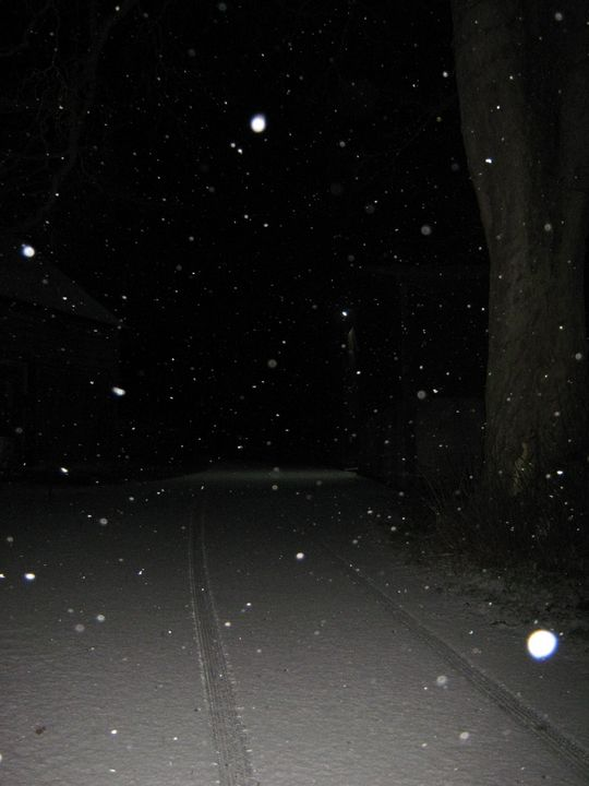 Snowy night - nature's window