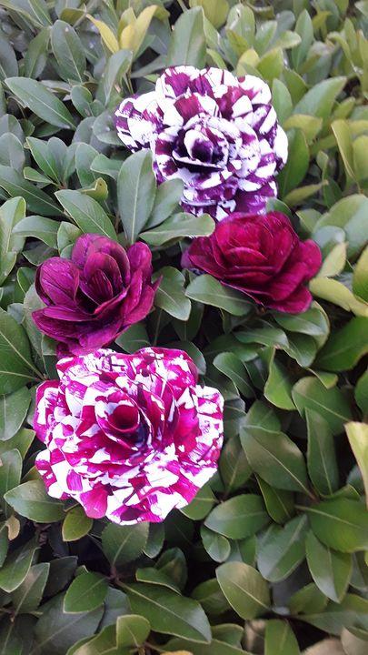 Striped paper roses - Violet Star