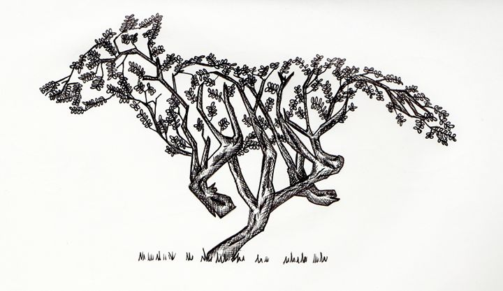 Wolf Bush - Shuahl