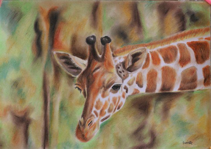 Giraffe - Danny Pencil