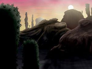 Succulent Desert Sunrise