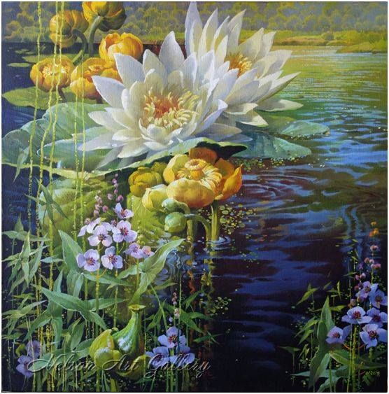 Water Lilies - Nelson Art Gallery