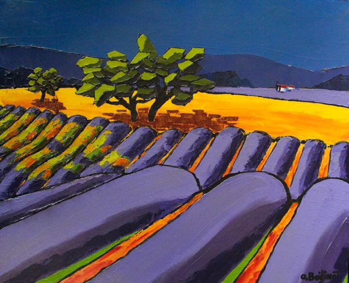 Provence lavanders fields - O.BOISSINOT