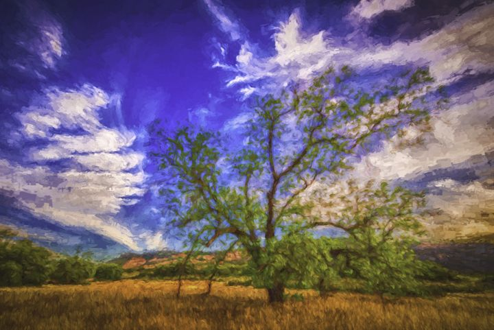 The Great Oak Tree - Foto By Rudy