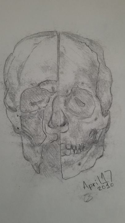 Human Scull - My art painting the worl