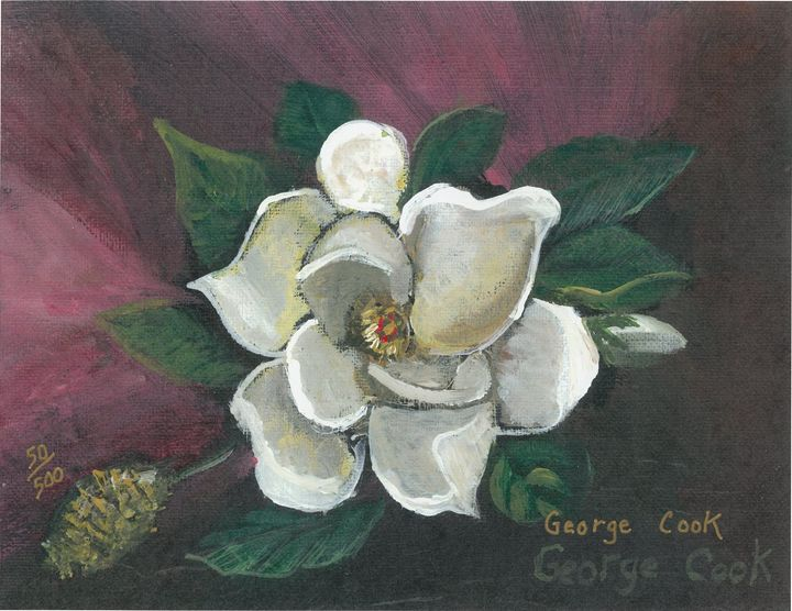 Magnolia - George's Art