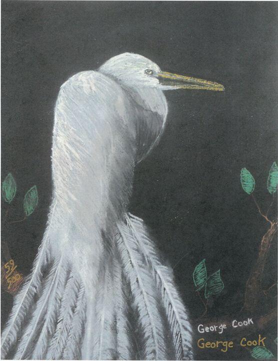 Egret - George's Art