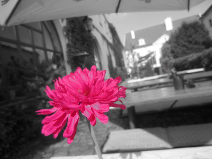 Flower - D.H.Reeves