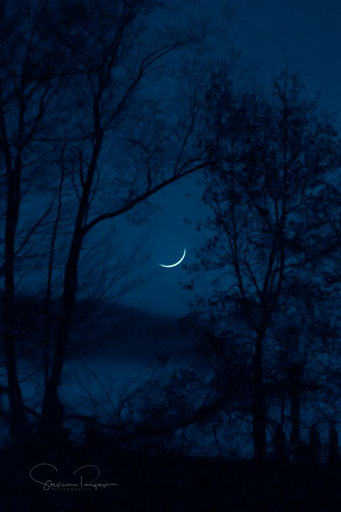 Waxing Crescent - Steven G. Ryan