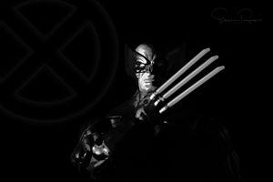 The Wolverine - Steven G. Ryan