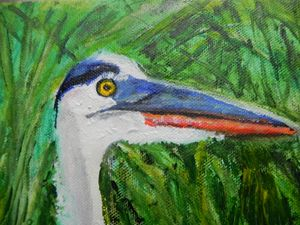 TRI_COLORED HERON