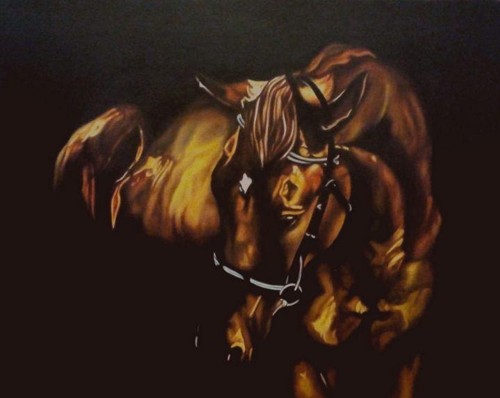 Beauty of Stallion - Fairways