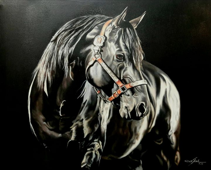 Dark Horse - Fairways