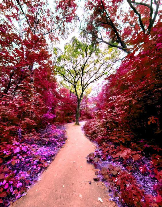 Magical Wishing Tree - JSJ Designs Studio