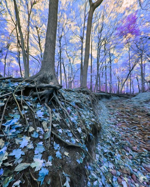 Enchanted Wooded Creek - JSJ Designs Studio