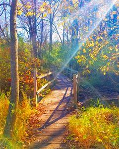 Magic Fairy Trail