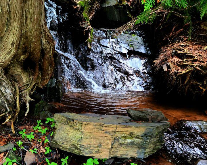 Small Hidden Waterfall - JSJ Designs Studio