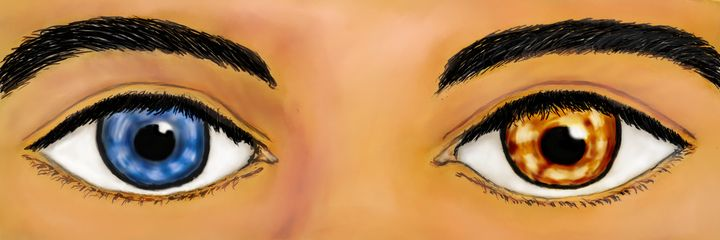 """""""Windows to the soul"""" - Wil's Gallery"""