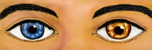 """""""Windows to the soul"""""""