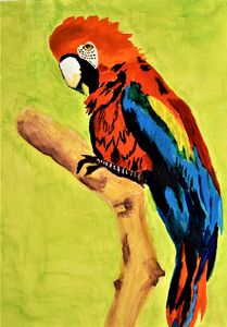 MACAW PARROT-2021