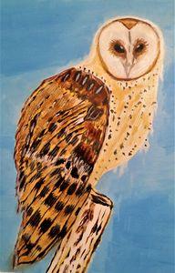 BARRED OWL 2021