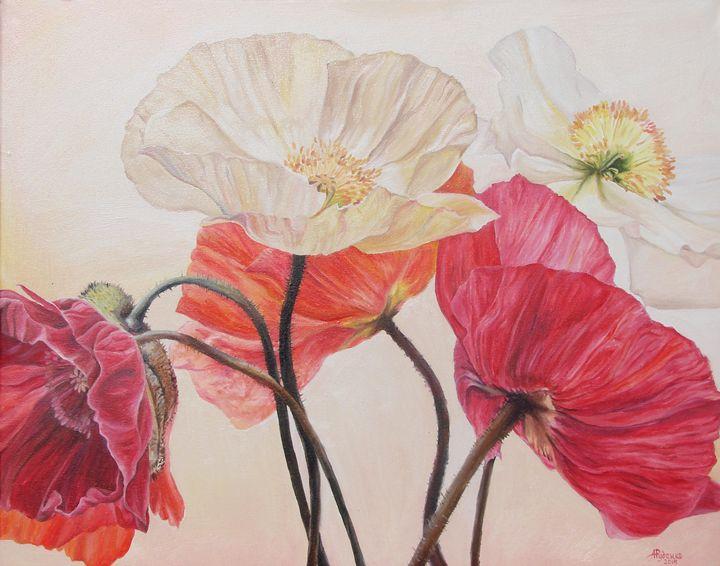 Poppies - Anne Rudenko