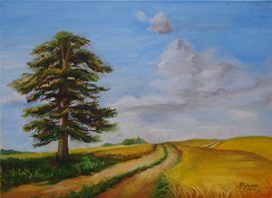 Road through wheat fields