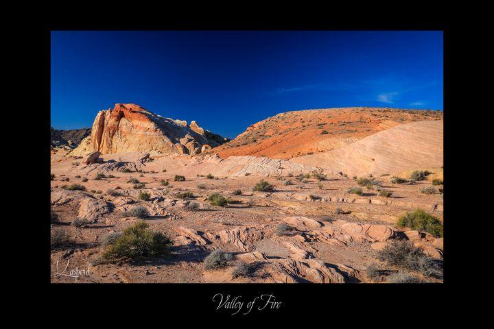 Valley of Fire - L'Oeil de la Photographe