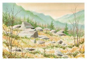Rock Meadow
