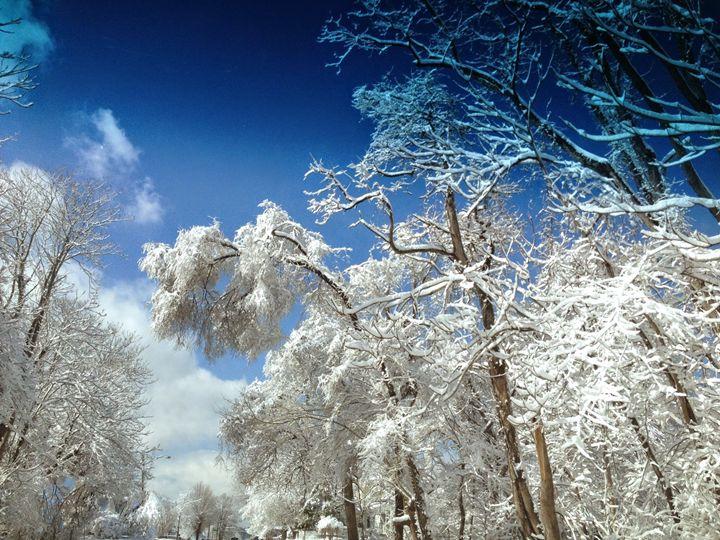 Frozen in Time - Shirley Lynn