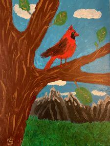 Cardinal overlooking the rockies
