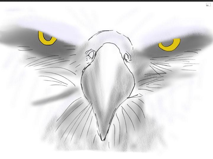Eagle Sketch - Digital Art