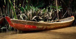 Mekong Canoe