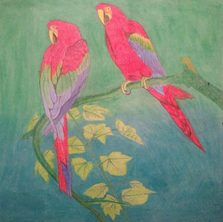 pencil art -  Rohitn841