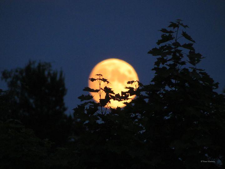 Full Moon rising 177 - Viveca Lammers