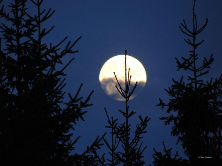 Moon Rising 178 - Viveca Lammers