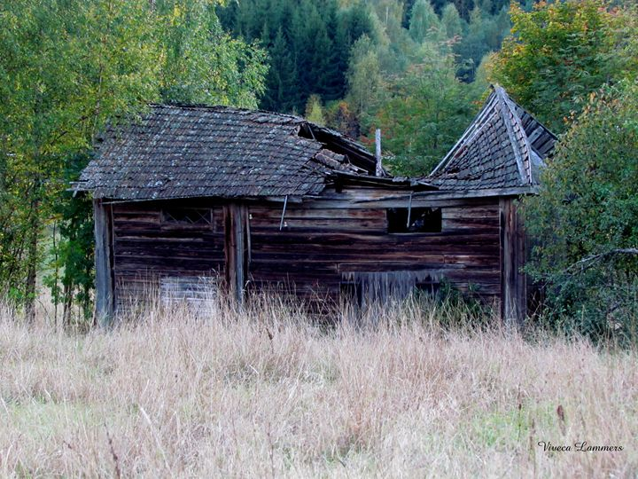 Old barn - Viveca Lammers