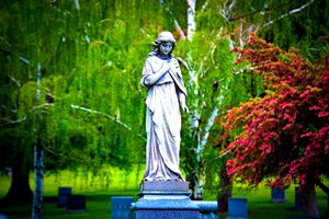 The Beauty of Mount Olivet - A & B Martin Photography