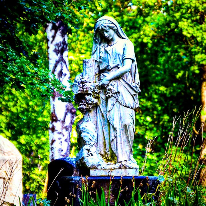 The Grieving Widow - A & B Martin Photography