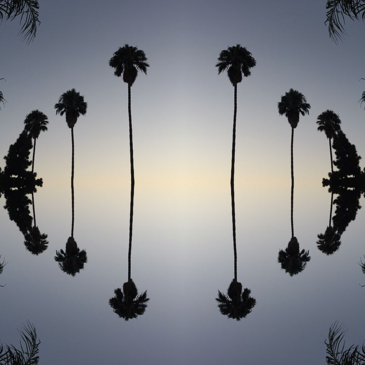 Floating Palms - Libbys_ArtStudio