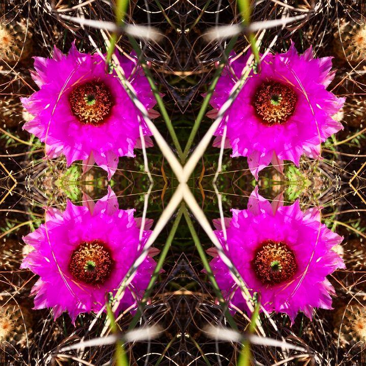 Pink Prickly Blooms - Libbys_ArtStudio