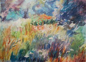 Windermere Meadow