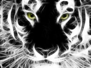 Fractilian Tiger