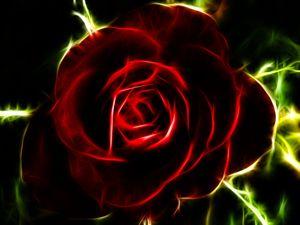 Fractilian Rose