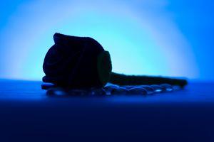 Single Red Fabric Rose