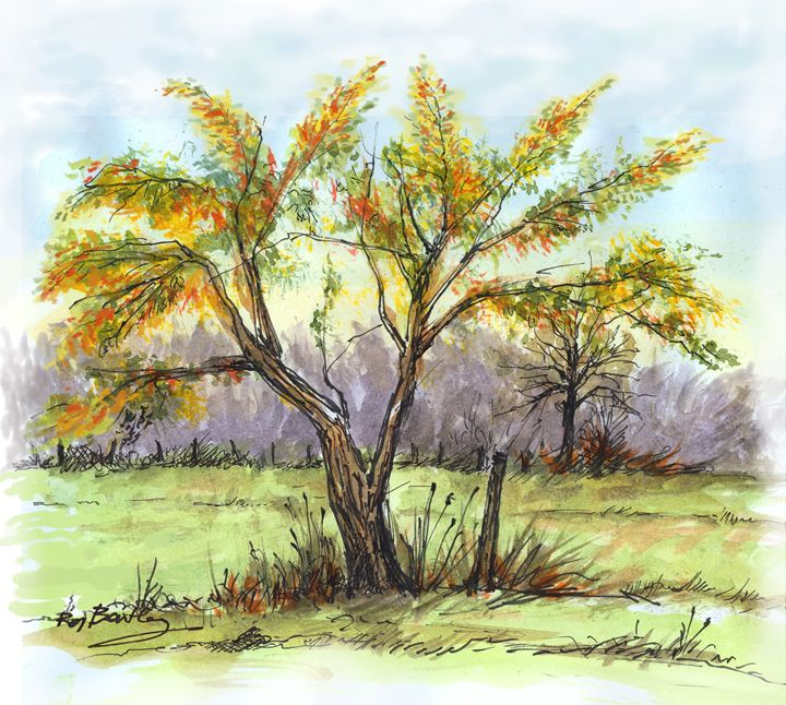 Autumn tree - Roy Bentley